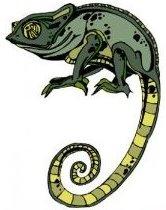 Camouflage Lizard